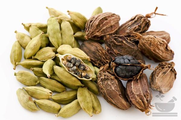 разновидности кардамона
