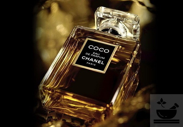 Гвоздика в парфюмерии