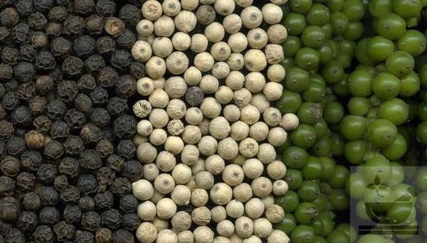 Фото разновидностей перца
