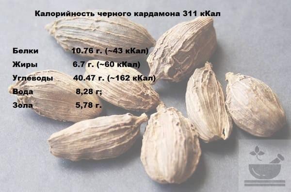 Пищевая ценность черного кардамона
