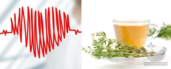 Чай из чабреца полезен для сердца