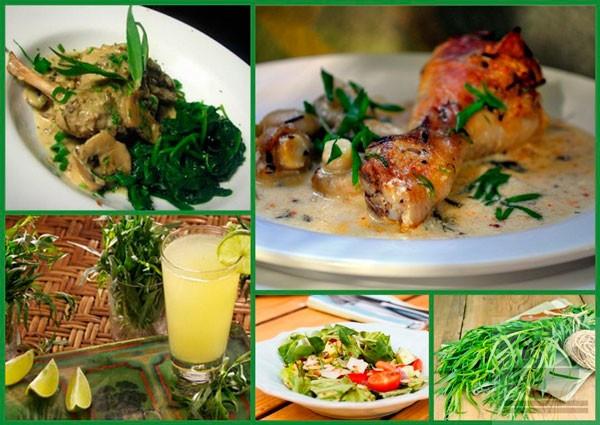 Эстрагон в кулинарии