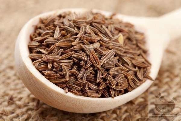 Фото семян тмина