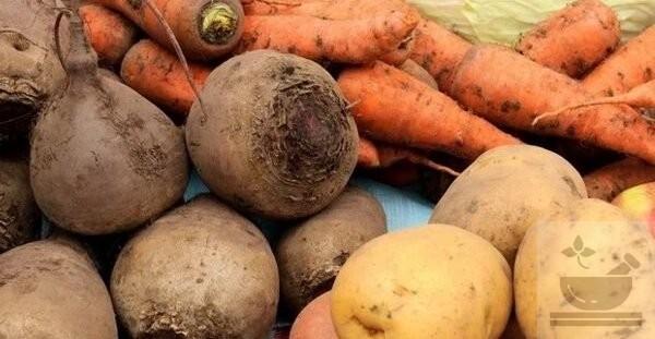 Как варить овощи на салат