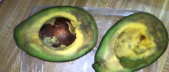 Авокадо темнеет почему что делать