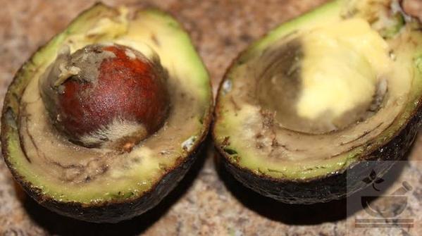 Авокадо окисление