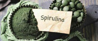 Спирулина полезные свойства и противопоказания
