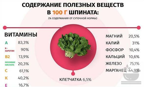 Полезные вещества в шпинате