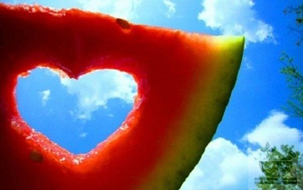 Арбуз полезен для сердечной мышцы