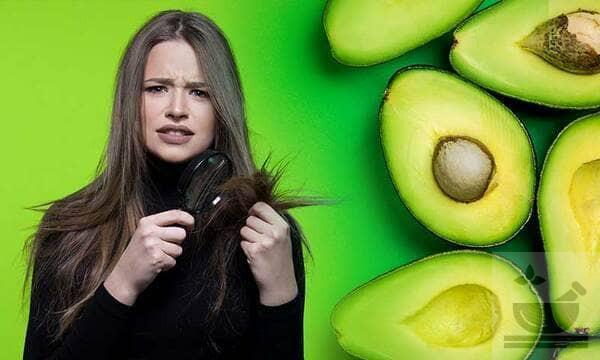 Авокадо для волос